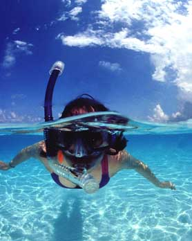 Snorkeling the Waters of the Cayman Islands
